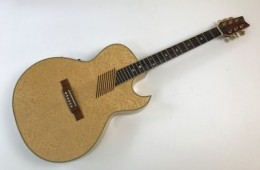 Washburn EA36 Natural 1996