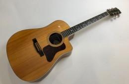 Gibson DSM-CE Songmaker 2009