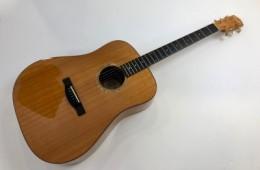 Fender ESD-10E Natural 2005