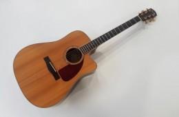Fender CD-320ASCE Natural 2011