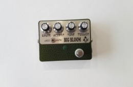 Amplified Nation Big Bloom Overdrive