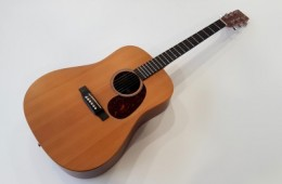 Martin & Co DX1AE Natural 2011