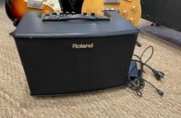 Roland AC-40 Acoustic Chorus